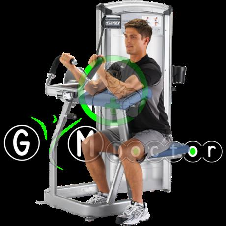 Cybex Arm Curl-Bicepsz gép -Cybex VR3
