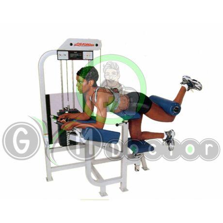 FARIZOM GÉP - Life Fitness PRO1