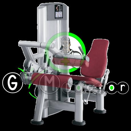 LÁB HAJLÍTÓ GÉP - Life Fitness Signature