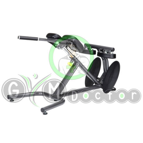 A993 Back Hyperextension - SportsArt Free Weights