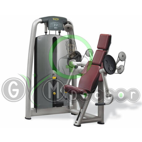 BICEPSZ GÉP - Technogym Selection